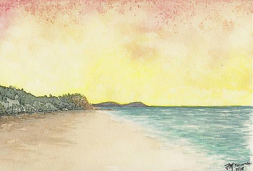 Joe Michelli - Yaroomba Beach 001
