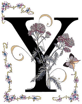 Stanza Widen - Yarrow and Yamfly Butterfly