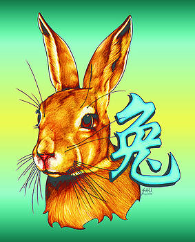 Year of the Rabbit by Sheryl Unwin