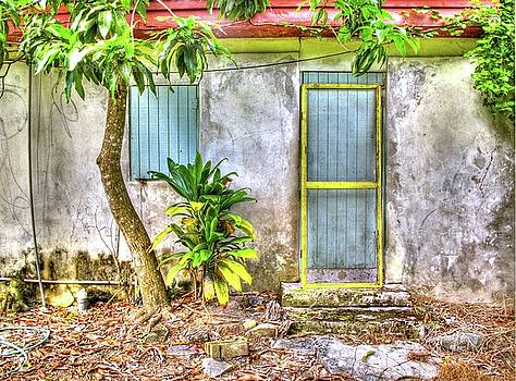 Yellow and blue door, St. Croix, USVI by Sydney Solis