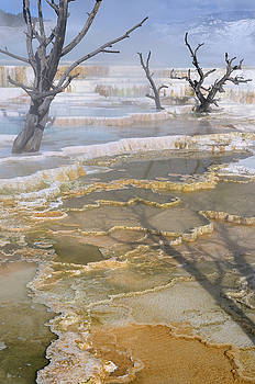 Reimar Gaertner - Yellow and blue water of travertine pools at the Main Terrace at