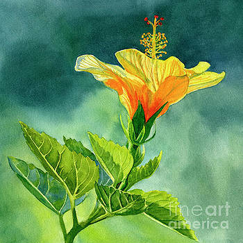 Yellow and Gold Hibiscus with Background Color by Sharon Freeman