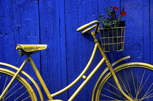 Yellow Bicycle in Canada by Alan Mogensen
