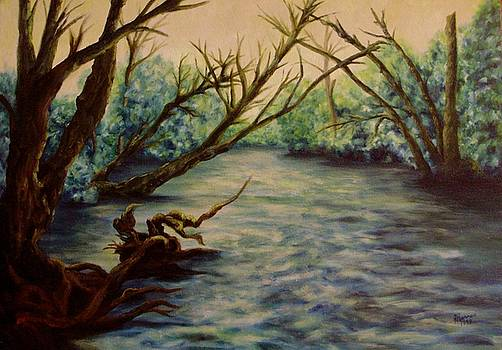 Yellow Breeches Creek Pennsylvania by Joann Renner