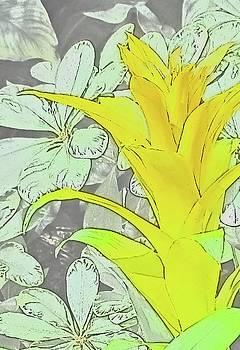 Yellow Bromeliad Flower by Tony Grider