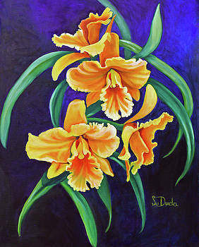 Yellow Cattlya Orchids by Susan Duda