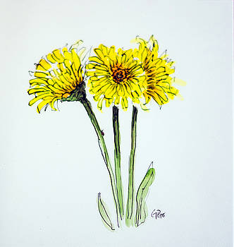 Yellow Daisies by Gaynell Parker