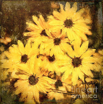 Yellow Daisies by Tina LeCour