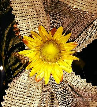 Yellow Dry Flower by Erika H