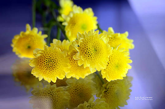 Yellow Easter Flowers by Julie Everhart