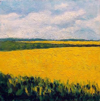 Yellow Field by Adriana Vasile