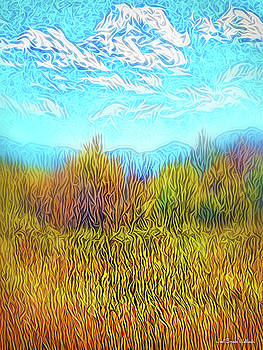 Yellow Field Clouds by Joel Bruce Wallach