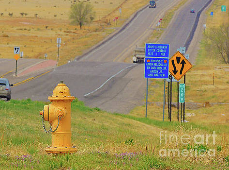 Yellow Fire Plug ver 4 by Larry Mulvehill
