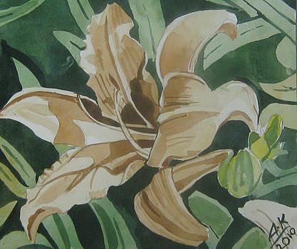 Yellow Flower by Akhilkrishna Jayanth