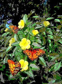 G Linsenmayer - YELLOW FLOWERS BUTTERFLIES DIGITAL PAINTING GULF COAST FLORIDA