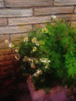 Yellow Flowers by a Brick Wall  by Alisha at AlishaDawnCreations