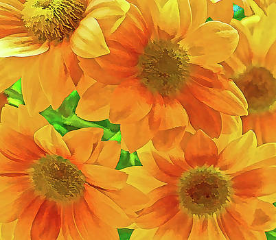 Yellow flowers by Paul Jarrett