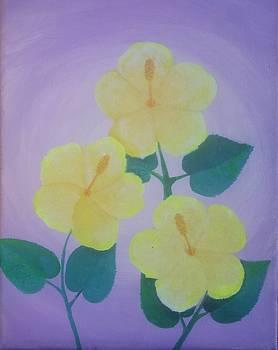 Yellow Haze Hibiscus  by Greg Roberson