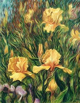 Yellow Irises by Hans Droog