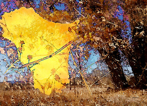 Yellow Kite Floating from Cottonwood Trees by Gretchen Wrede