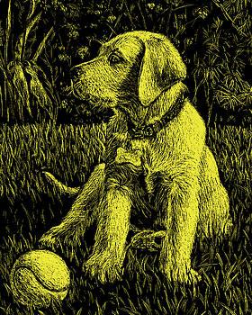 Yellow Labrador Puppy Dog by Irina Sztukowski
