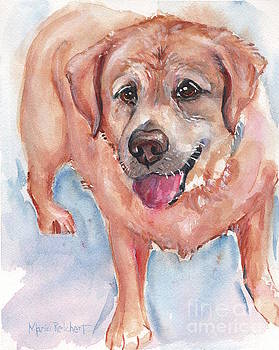 Yellow Labrador Watercolor Painting by Maria's Watercolor