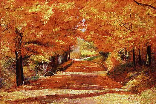 Yellow Leaf Road by David Lloyd Glover