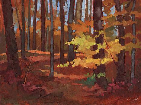 Yellow Leaves by Sue Dragoo Lembo