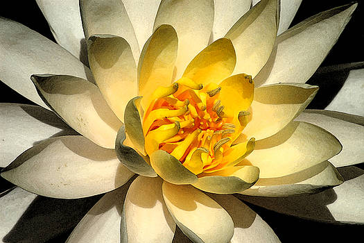 Robert Anschutz - Yellow Lily