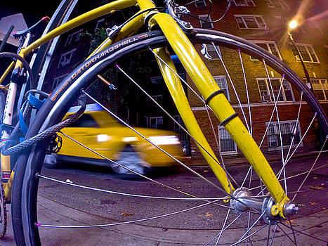 Steven Lapkin - Yellow on Yellow