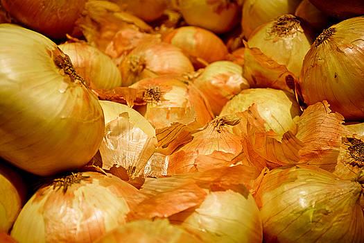 Robert Meyers-Lussier - Yellow Onions