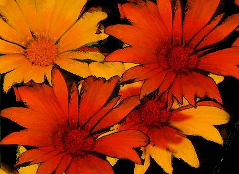 Yellow-Orange Flowers by Scott Smith