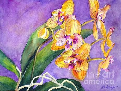 Betty M M Wong - Yellow orchids