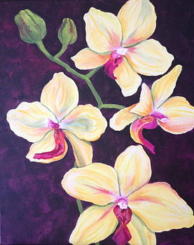 Yellow Orchids by Merrie Kapron Taverna