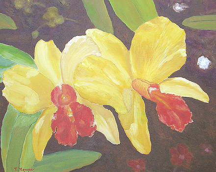 Yellow Orchids No 11 by Thi Nguyen