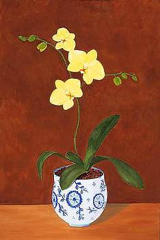 Yellow Orchids by Thi Nguyen
