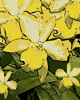 Ann Tracy - Yellow Orchids Woodcut