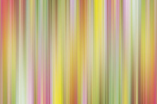 Pam  Elliott - Yellow pink flower abstract