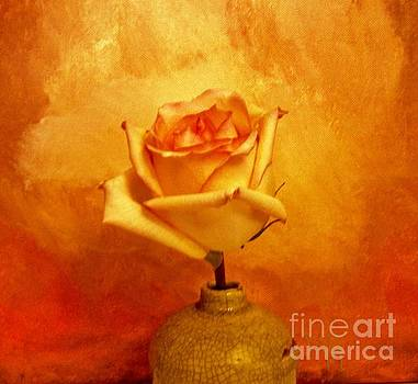 Yellow Red Orange Tipped Rose by Marsha Heiken