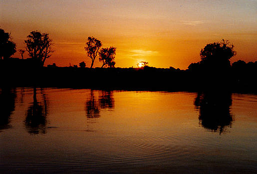 Yellow River Kakadu by Brian Chase
