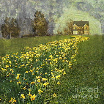 Yellow River to my Door by LemonArt Photography