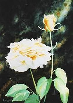 Yellow Rose by Kris Killman