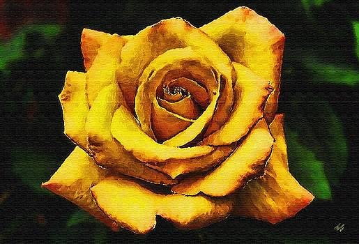 Yellow Rose of Texas by John Winner