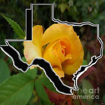 Yellow Rose of Texas with Texas by Eloise Schneider Mote