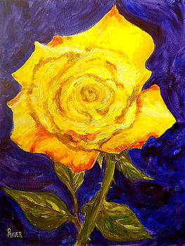 Yellow Rose by Pete Maier