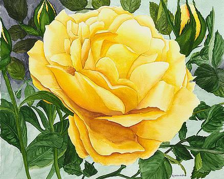 Yellow Rose by Robert Thomaston