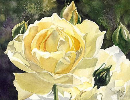 Alfred Ng - yellow rose watercolor