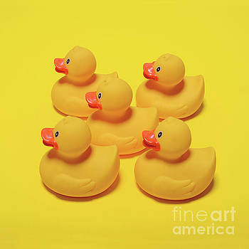 Yellow rubber ducks on yellow background - Minimal design by Aleksandar Mijatovic