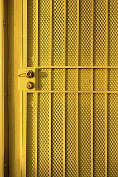 Yellow Security Door Venice Beach California by David Smith