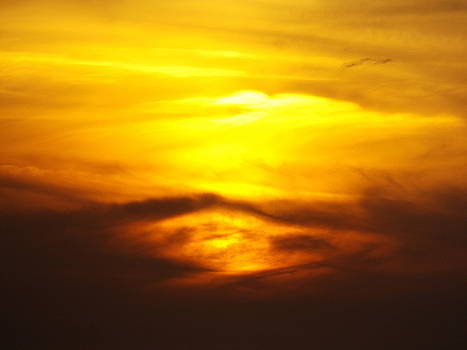 Yellow Skies by Julie Pappas